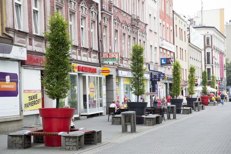 Drzewa w donicach XXL - jak zazielenić miasta? | Inspirowani Naturą