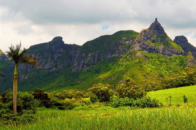 Pieter both Mountain Mauritius....just behind our home.