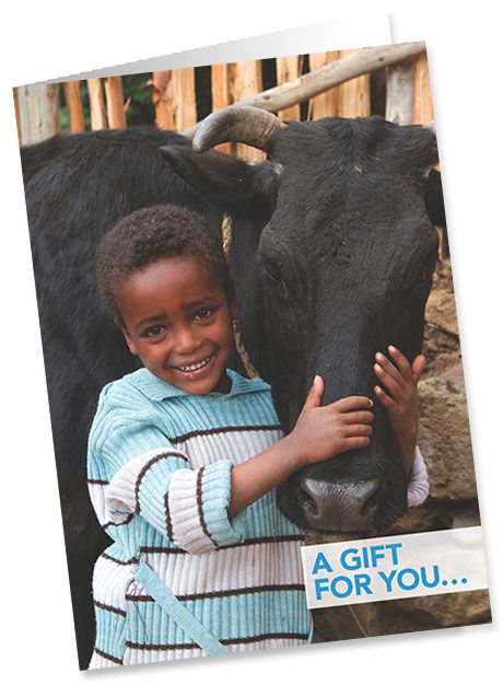A truly special gift. You can provide a calf for a mother in Uganda affected by HIV/AIDS to help provide fresh milk for her children and a source of regular income too.  #giftsforgood