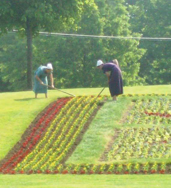 Amish garden in Northern Indiana