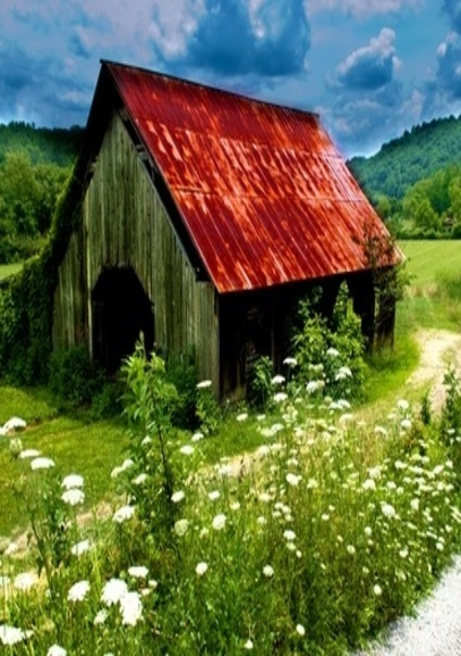 Barn Setting By The Flowers