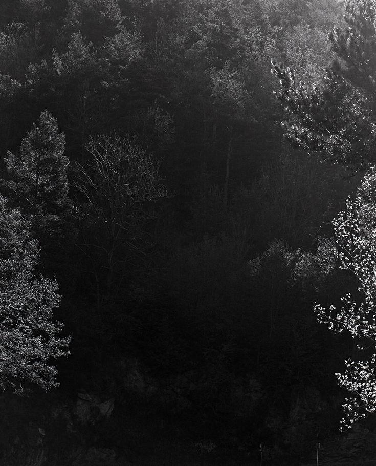 Sequester-de-Awoiska-van-der-Molen-Tipibookshop-7.jpg (1280×1584)