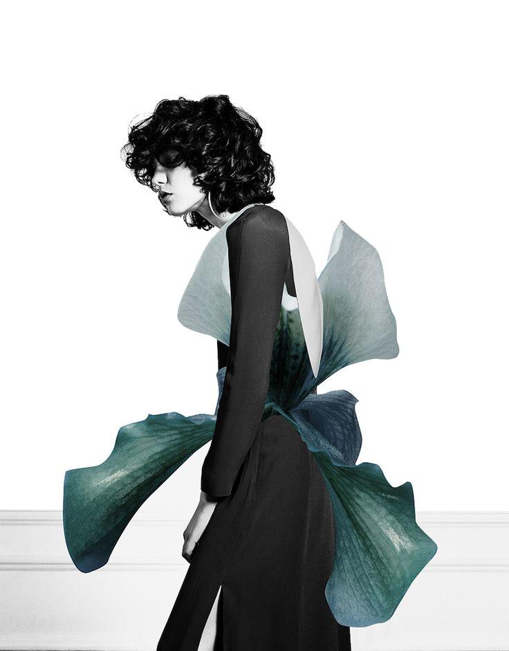 L'espagnol Ernesto Artillo crée ces collages en ajoutant des pétales de fleurs à des des photographies de mode.