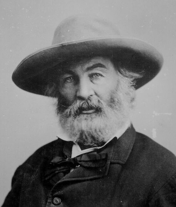 """O you, whom I often and silently come where you are, that I may be with you;	 As I walk by your side, or sit near, or remain in the same room with you,	 Little you know the subtle electric fire that for your sake is playing within me.""	 - Walt Whitman: INFP"