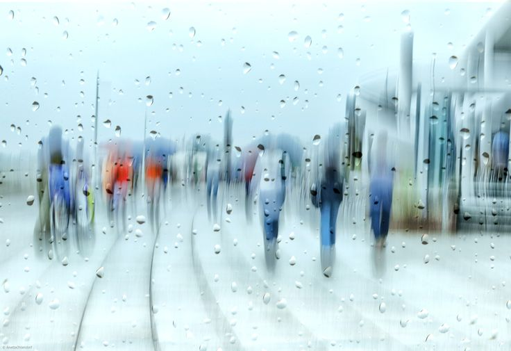 1x.com is the world's biggest curated photo gallery online. Each photo is selected by professional curators. it`s raining by Anette Ohlendorf