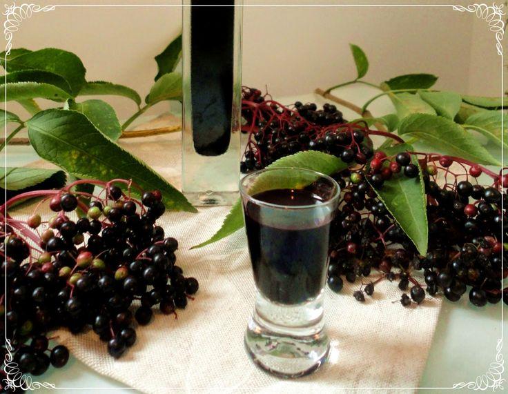 Pyry na Gaz: Nalewka z owoców czarnego bzu