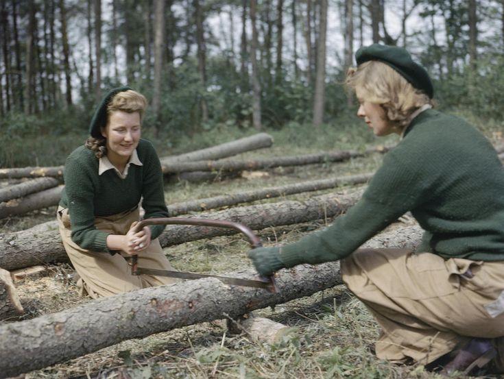Dos mujeres del Ejército Femenino de la Tierra serrando un alerce en un campo de entrenamiento en Culford, en el este de Inglaterra, en 1943.