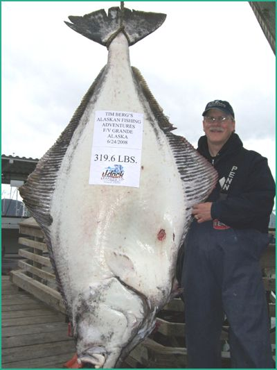 Best 25 halibut fishing ideas on pinterest for Halibut fishing charters washington