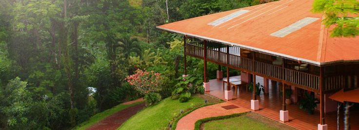 Finca Luna Nueva Lodge is a sustainable rainforest eco-lodge hotel, offering an intimate experience of primary rainforest together with a certified organic biodynamic farm.