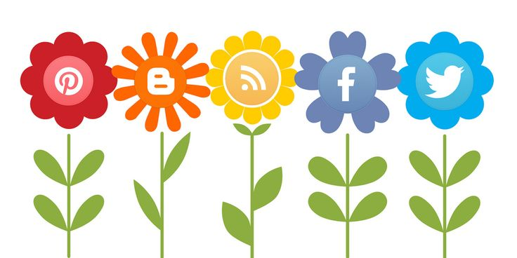 Tips To Help You Take Your Social Media Marketing To The Next Level