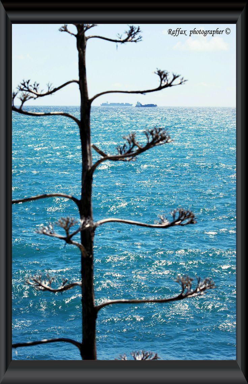 Finestra sul mare window to the sea