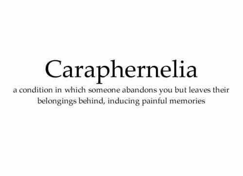 Caraphernelia - Definition.