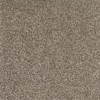 Carpet Sample - Lavish II - Color Mineral Rock Texture 8 in. x 8 in., Grays