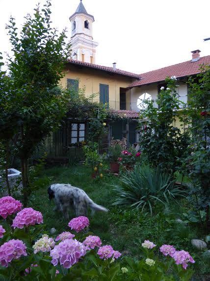 What a beautiful garden setup!