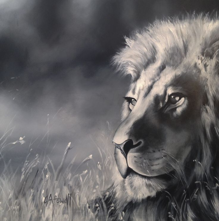 Portrait of a male lion, his alert gaze threatening.  This painting aimed to capture the different textures of the lions and to contrast with a soft and subdued background.