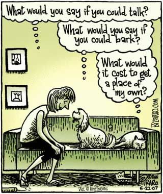 What would you say if you could talk?   #cats #dogs