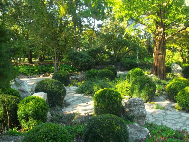 Margitszigeti Japánkert