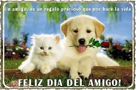 Labrador Retriever, Friendship, Animals, Erika, Html, Dreams, Facebook, Google, Happy Friends Day