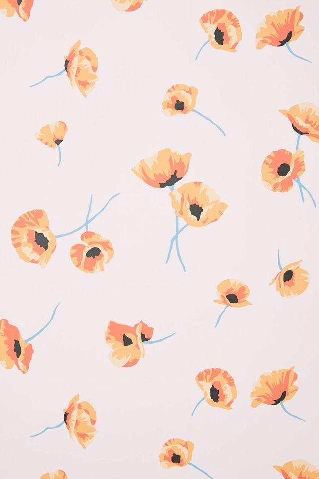 Poppy Wallpaper Poppy Wallpaper Iphone Background Wallpaper Fall Wallpaper