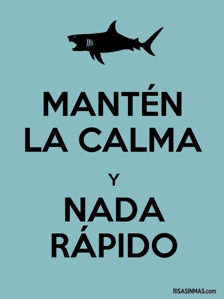 Mantén la calma y nada rápido.
