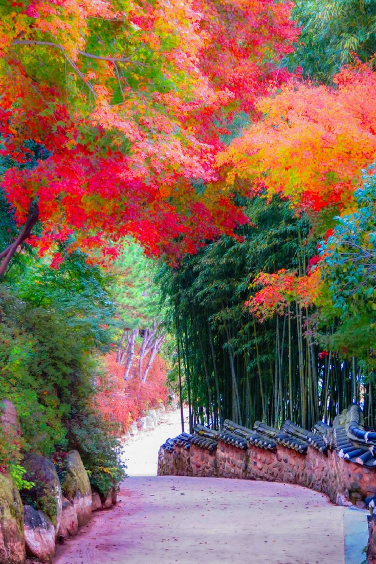 What To Do In South Korea The 7 Attractions You Cannot Miss South Korea Travel Korea Wallpaper Korea Travel