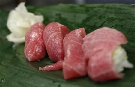 Sushi of high-quality fatty Atlantic bluefin tuna or ''o-toro sushi