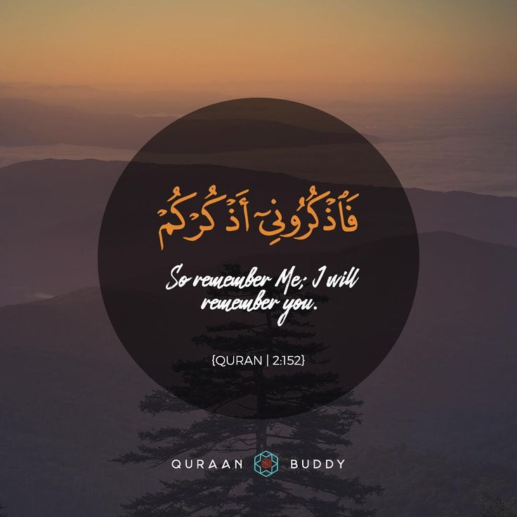 """169 Likes, 3 Comments - Quraan Buddy (@quraanbuddy) on Instagram: """"""""So Remember Me; I will remember you."""" - Quran 
