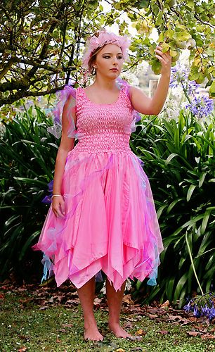Plus Size Fairy Costume Ibovnathandedecker