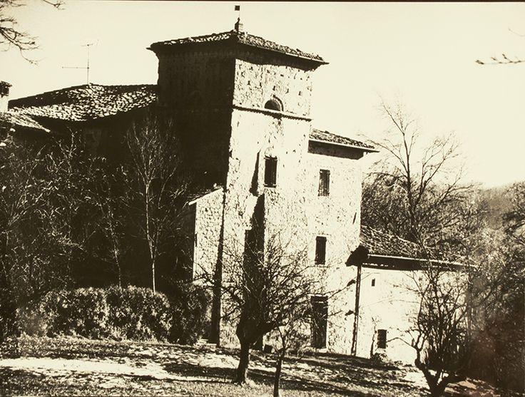 Museo Carlo Gajani (BO), Dragodena