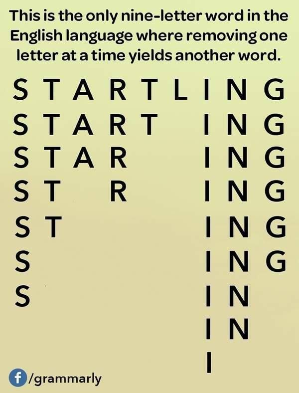 Starlings Also Works So This Meme Isn T Exactly True Still Interesting Though English Language Funny Words Funny Facts