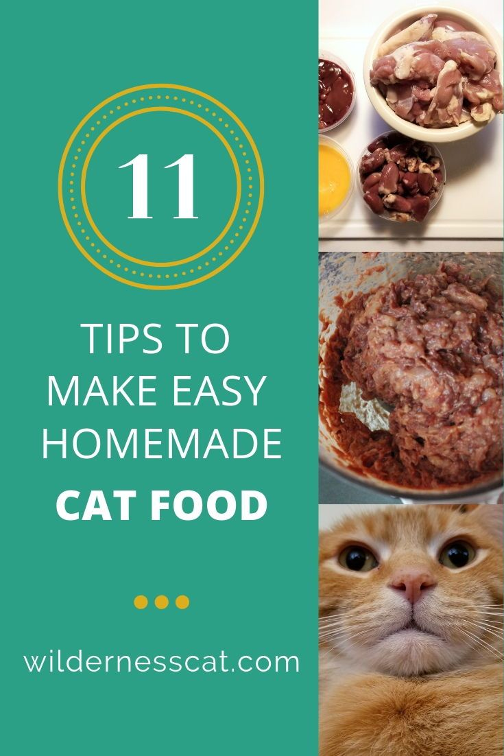How To Make Raw Cat Food 11 Hacks To Make It Easy Raw Cat Food Recipes Homemade Raw Cat Food Homemade Cat Food