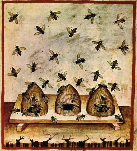 #medieval #beekeeping