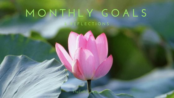 Monthly goals and reflections