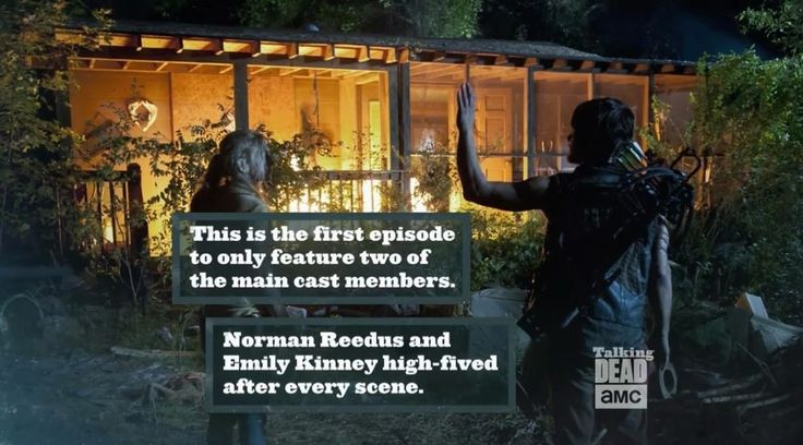 "44 Things You Didn't Know About ""The Walking Dead"""