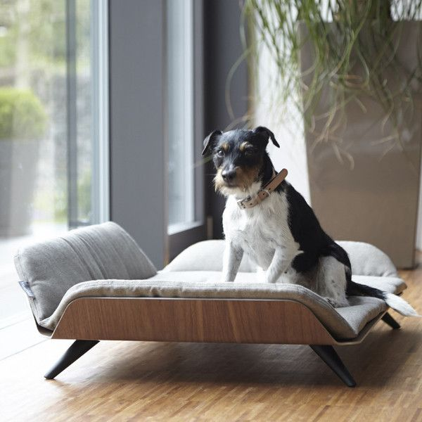 StyleTails - Letto Dog Day Bed - Mocca | Luxury Dog Beds | MiaCara | StyleTails