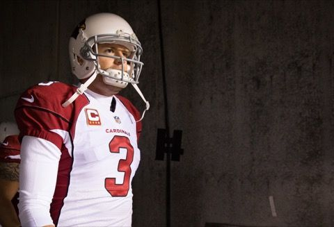 Carson Palmer is Totally Going Down! -- We love misleading stats and we've got a beauty for you. Arizona Cardinals quarterback Carson Palmer has never won a playoff game, so he's totally going down.