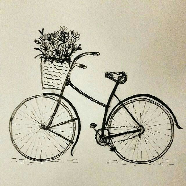 Loved This Pretty Cycle Drawing Art Vintage Drawing