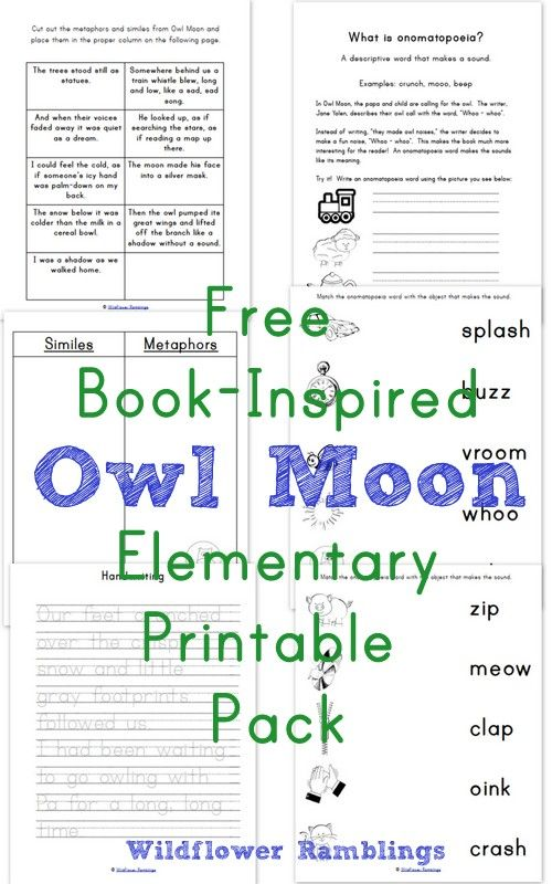 Free Book-Inspired Owl Moon Elementary Printable Pack from Wildflower Ramblings