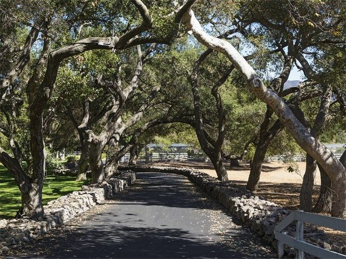 thousand oaks divorced singles Search 64 single family homes for rent with 4 bedroom in thousand oaks, california find thousand oaks apartments, condos, townhomes, single family homes, and much more on trulia.