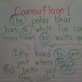 Polar bear poem with sight words-  greenbeankindergarten.wordpress.com