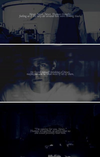 The Fever Code + Newtmas quotes