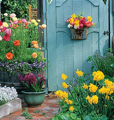 Flowers in various containers, painted gate