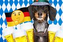 10 Things About Germany That Germans REALLY Want Americans To Know