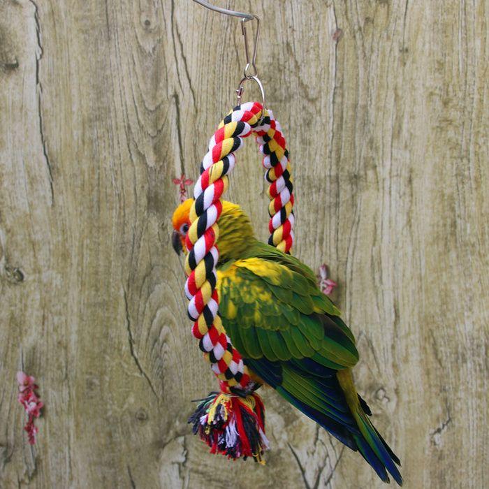 Pet Bird Toy Ring Ring Climbing Ring Cotton Rope Toy Bite Resistant Cotton Rope Swing In 2020 Bird Toys Bird Supplies Pet Bird