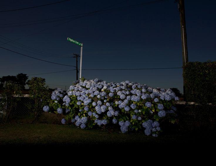 Greta Anderson : Photographer
