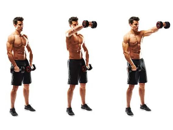 Shoulder Workout | The Best 4 Exercises for Deltoid Definition - The Zone