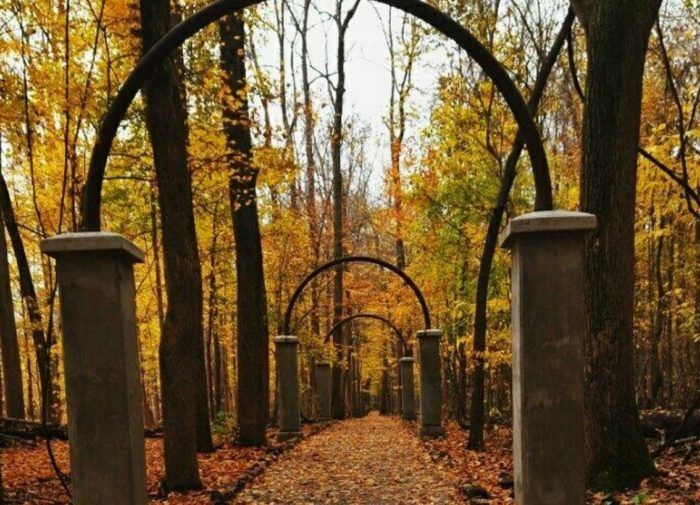 The 21 Places You Should Go In Indiana In 2017 --Rose Island, Charlestown   Rose Island is what's left of a former, historic amusement park in Charlestown. Now you can explore what's left of the park, from stone structures to an eerily beautiful massive swimming pool.