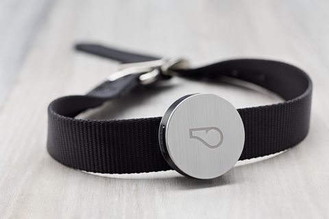 Whistle is an activity monitor for dogs designed to provide key insights into your dog's behavior by tracking daily activities and health trends.
