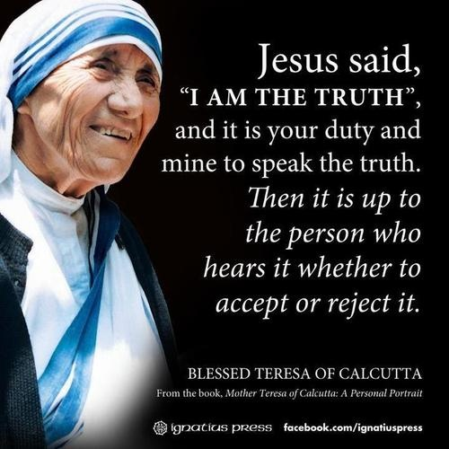 Image result for conversion of sinners, mother teresa