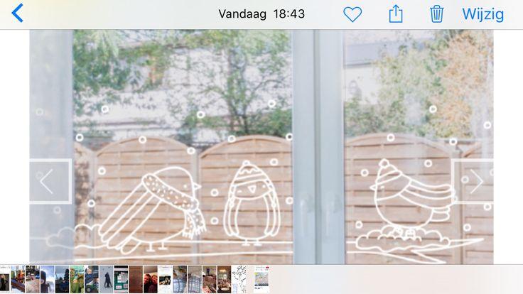 Raam tekening winter/ vogels